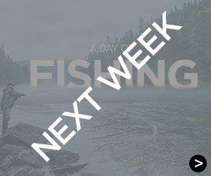 Next week : A day of fishing